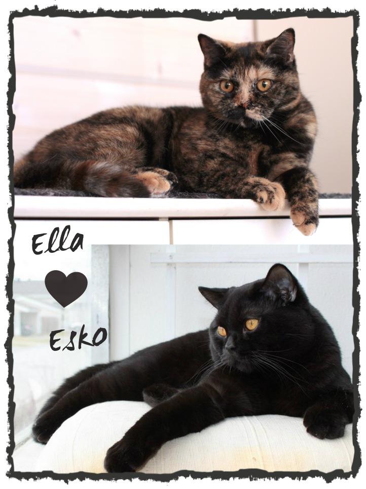 Ella & Esko