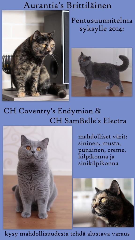Annons Ella & Elmer